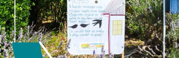 Zomerstraat in beeld: Poëzie in de Wolvenstraat